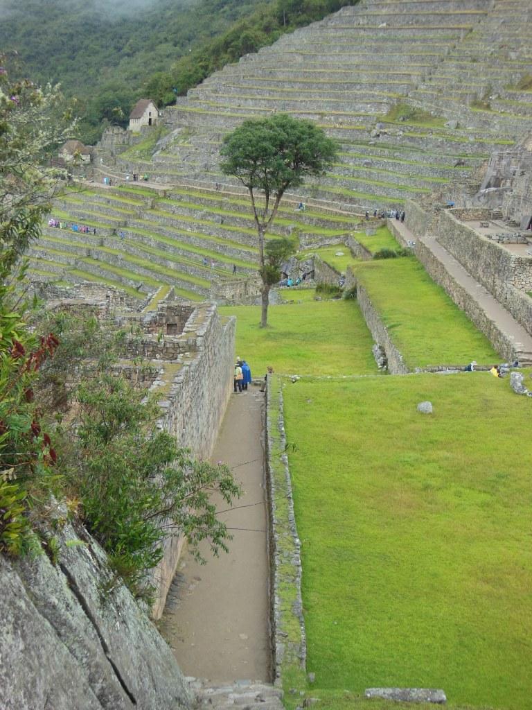 Lake Titicaca and Machu Picchu 11-5-31 853