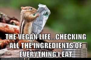 squirrel checks ingredients